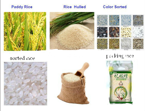 about rice mill machine
